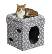 Curious cat Cube Cat House Cat Condo