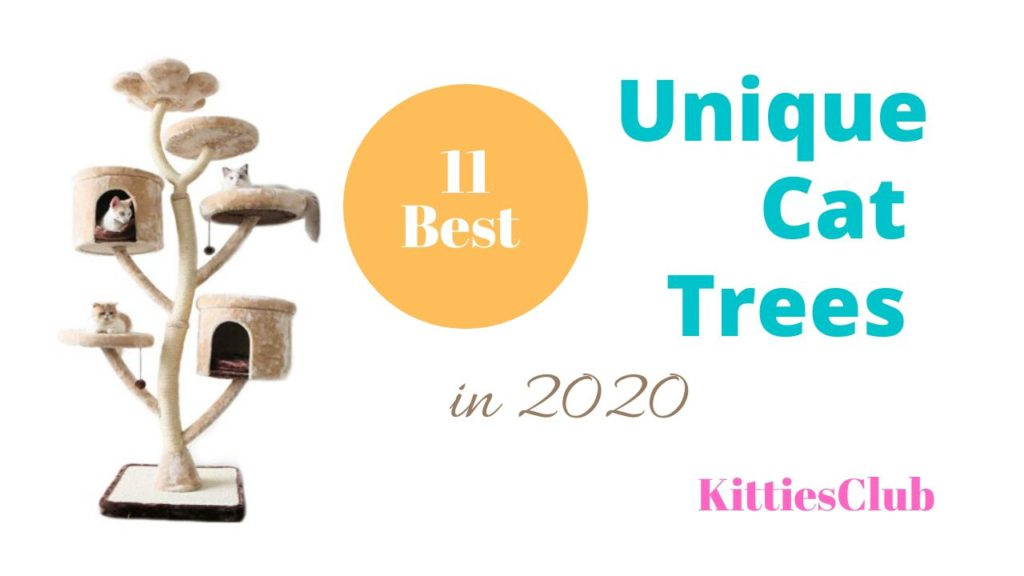 unique cat trees towers