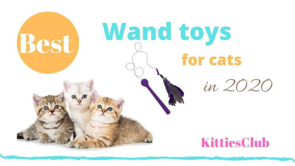 best cat wand toys
