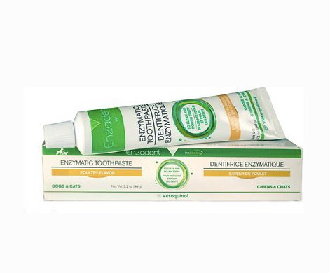 Enzymatic toothpaste for cats