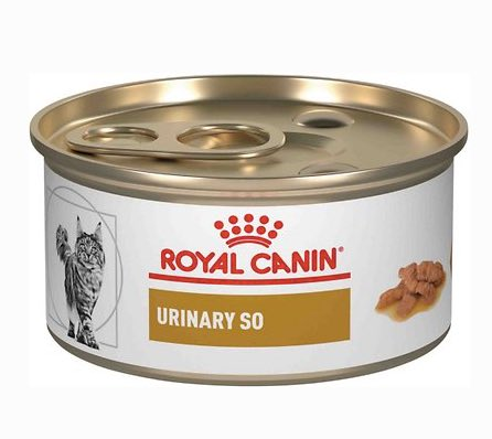best urinary food for cats - royal canin